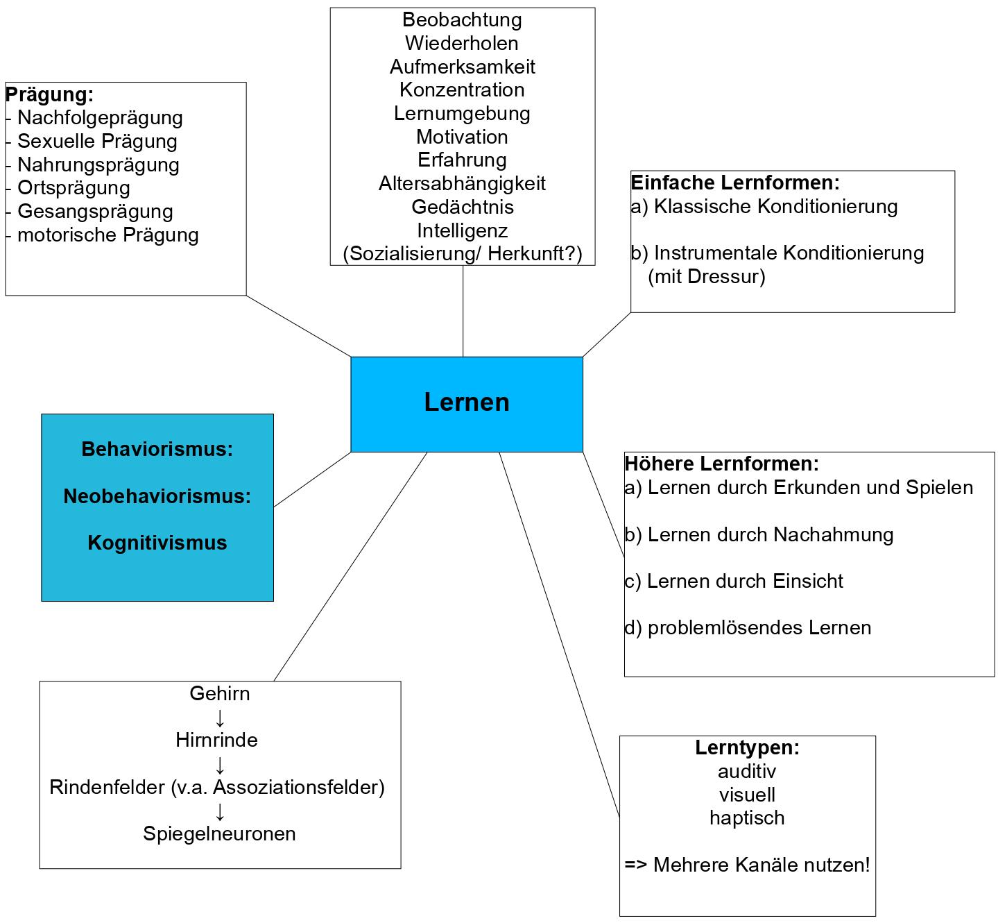 Nachahmung biologie deutsch klassenarbeiten klasse 7 berichte schreiben